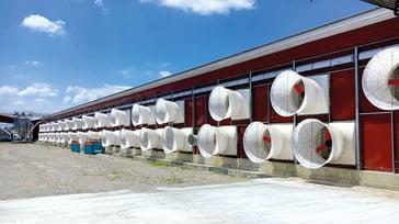 Multifan Fiberglass Cone Fan Vplus Poultry L