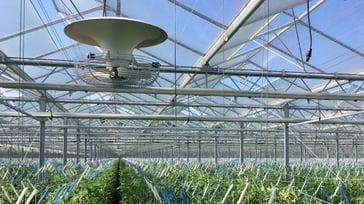 Multifan V-FloFan Greenhouse P