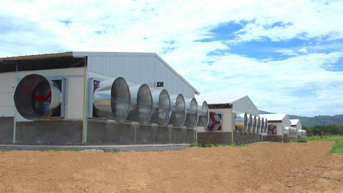 Multifan Ventilateurs à cônes en fibre de verre poulaillers