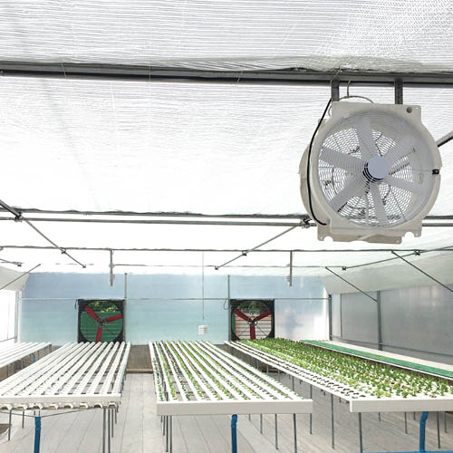 Multifan Circulation Fan Greenhouse R