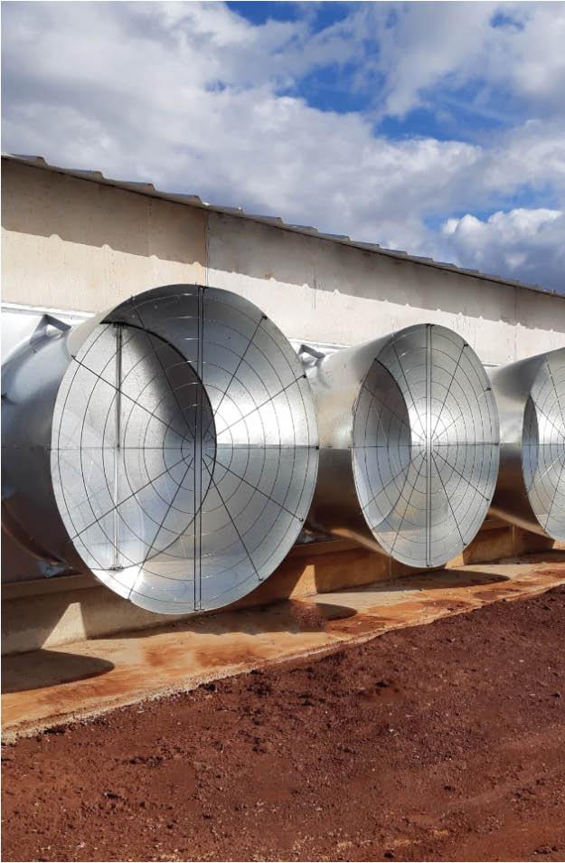 Multifan 镀锌斜壁式和直壁式风机 家禽