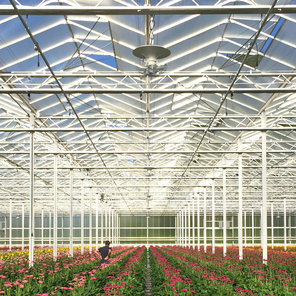 Multifan V-FloFan Greenhouse 2 R
