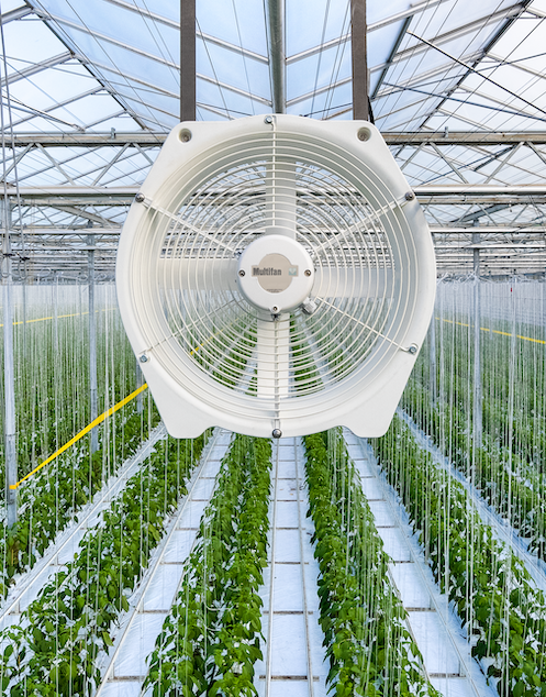 Talk to a Greenhouse Specialist